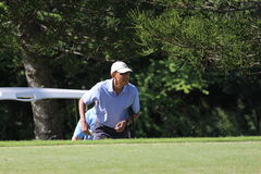 Obama playing golf Hawaii Stock Images