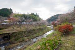 Obara, Aichi, Japan - November 22, 2016: Niet geïdentificeerde toerist v Stock Foto