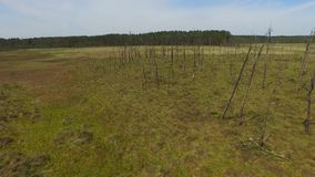 OBARY, CANTIDAD de //AERIAL de la reserva de naturaleza almacen de metraje de vídeo