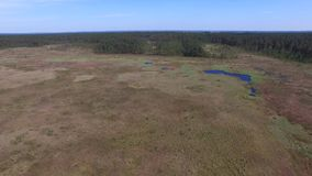 OBARY, Naturreservat //AERIAL-GESAMTLÄNGE stock footage