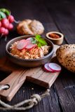 Obatzda - propagação tradicional do Bavarian feita do queijo, da manteiga, da cebola, do pó da paprika e da cerveja foto de stock