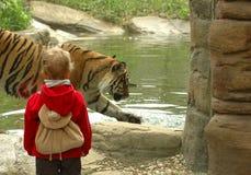 Obbligazione. Bambino e tigre. Fotografie Stock Libere da Diritti