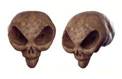 Obca czaszka - Zakazująca archeologia Obrazy Stock
