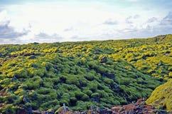 Obcego krajobraz z światu, lubi formacje w Iceland zdjęcia royalty free