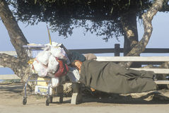 Obdachlose Frau, die mit Warenkorbbesitz, Santa Monica, Kalifornien schläft Stockfotos