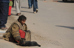 Obdachlose Frauen mit Hund Stockbilder