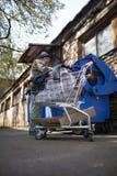Obdachloser Mann, der nach Lebensmittel im Abfalleimer sucht Stockbilder