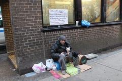 Obdachloser Mann und seine Katze Lizenzfreies Stockfoto