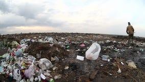 Obdachloses schmutziges schauendes Lebensmittel des arbeitslosen Mannes des Dumps stock video