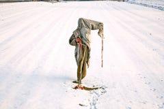 Obdarty i marznięcie strach na wróble w zimie na snowfield obrazy stock