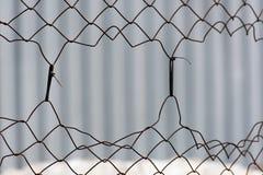 Obdarty metal siatki ogrodzenie zdjęcia royalty free