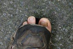 Obdarty tenisówka z palec u nogi na asfalcie fotografia stock