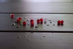 obecna czerwony Obraz Stock