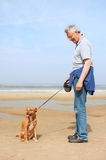 Obedience at the beach Royalty Free Stock Photography