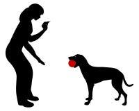 Obediencia del perro: ¡Comercio del comando! Foto de archivo libre de regalías