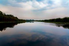 Obedska pond Royalty Free Stock Photo