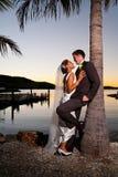 obejmowania nowożeńcy palmowy zmierzchu drzewo Zdjęcia Royalty Free