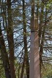 obelisk stockbilder