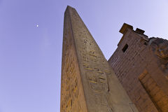 Obelisk in luxor temple Stock Images