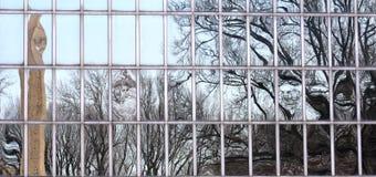 Obelisk-Reflexion Stockfoto