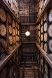 Oben in Bourbon-Lager gerade schauen Lizenzfreies Stockfoto