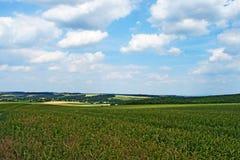 Oben genanntes Feld des bewölkten Himmels an der Österreichisch-tschechischen Grenze stockfoto
