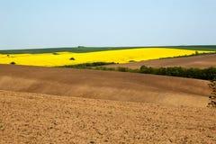 Oben gepflogen und bebaute Felder mit verschiedenen Ernten stockfotografie