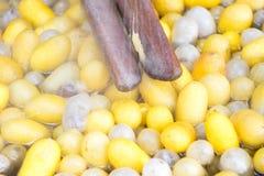 Oben geschlossen von der Weinlesemethode für das Seidenwirbeln und gelb und vom weißen Kokon auf Heißwasser stockfotos