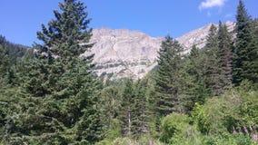 Oben schauen zum Berg Lizenzfreie Stockbilder