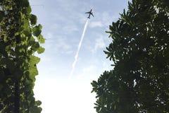 Oben schauen, zum des Flugzeuges zu silhouettieren, das morgens Himmel fliegt und Stockbilder