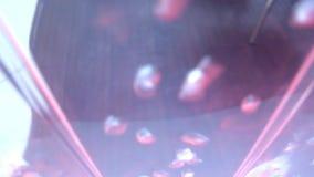 Oben steigende und explodierende Wasser-Blasen stock video