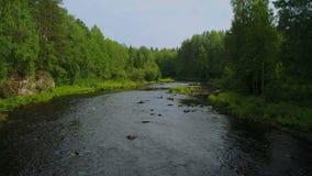 Oben vom schnellen Waldfluß in Karelien, Russland fliegen stock video