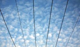 Obenliegende elektrische Drähte Lizenzfreies Stockfoto