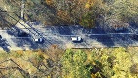 Obenliegende von der Luftdraufsicht über dem Auto, das durch bunten Wald reist stock video