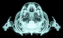 Obenliegender voller Körper des Röntgenstrahls stock abbildung