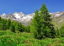 Ober Gabelhorn Obrazy Royalty Free