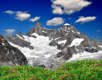 Ober Gabelhorn - Swiss alps. Beautiful mountain Ober Gabelhorn - Swiss alps royalty free stock photos