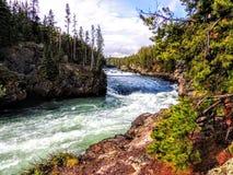 Obere Fälle, Yellowstone River, Yellowstone Nationalpark, UNESCO-Welterbestätte, Wyoming, die Vereinigten Staaten von Amerika Stockfotos