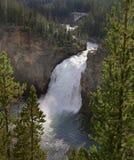 Obere Yellowstone-Fälle Stockfotografie