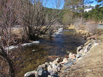 Oberer Bärn-Nebenfluss, Immergrün, Colorado Lizenzfreie Stockbilder