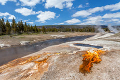 Oberes Geysir-Becken, Yellowstone Nationalpark Wyoming Stockfotos