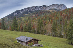Oberes Orterer Alm südlich Benediktenwand Stockbilder