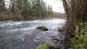 Oberes Video McKenzie-Fluss-HD stock video