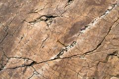 Oberfläche der Felsenklippe, Steinstrukturierte, lizenzfreie stockfotografie