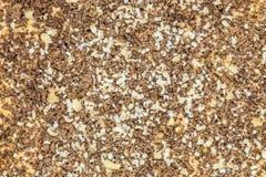 Oberfläche der Süßspeise mit Nuss und Schokoladensplittern Stockfotografie