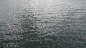 Oberfläche des Ozeans stock video