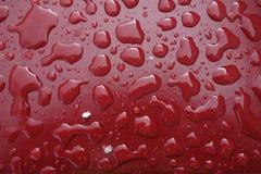Oberflächenspannung - waterdrops auf einer roten Beschichtung stockfotografie
