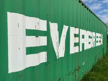 Closeup of one old isolated green evergreen marine container on grass, lettering with diminishing perspective