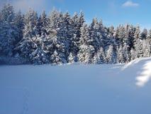 Oberhof, Германия Стоковая Фотография