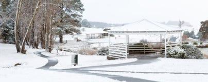 Oberon błonie w zima śniegu fotografia royalty free